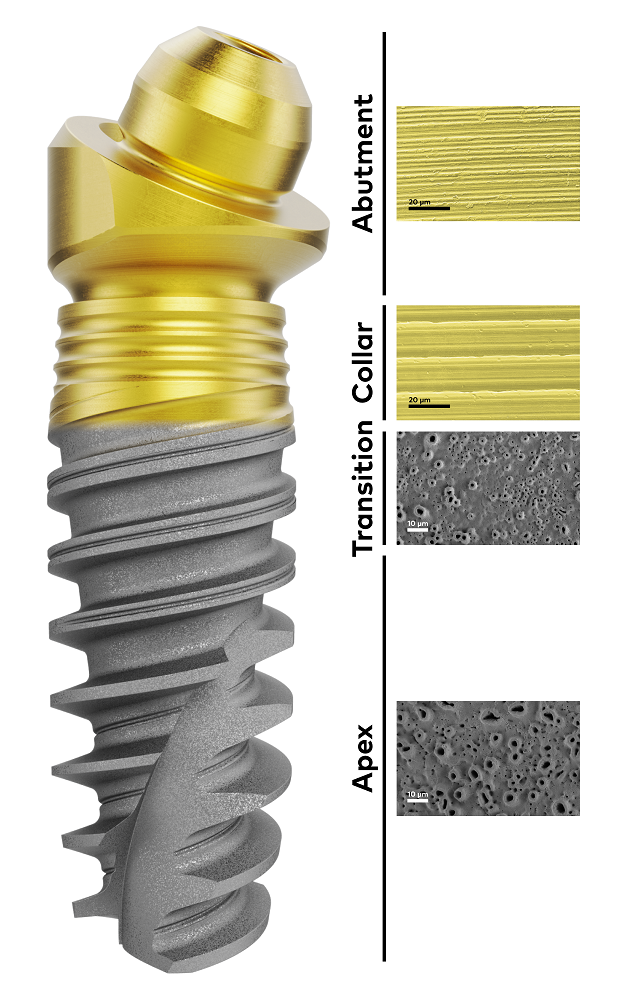 Dental implant surface and abutment surface